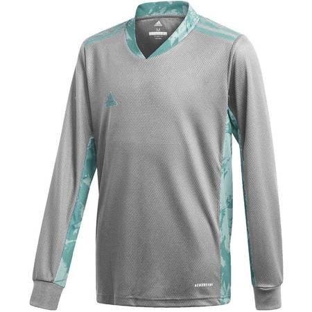 Bluza bramkarska dla dzieci adidas AdiPro 20 Goalkeeper Jersey Youth Longsleeve szaro-niebieska FI4197
